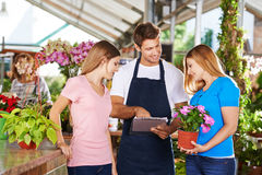Gardener giving advice to customers. Gardener in a nursery shop giving advice to two female customers royalty free stock photography