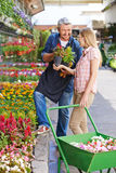 Gardener giving consultation to customer Stock Photo