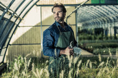 Gardener in a greenhouse Royalty Free Stock Photo