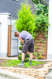 Gardener with a hedge trimmer Royalty Free Stock Photos