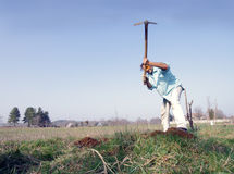 Gardener with hoe Stock Photography