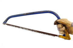 Gardener Holding a Bow Saw Royalty Free Stock Photo