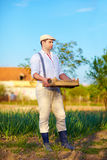 Gardener holding box with potatoes, countryside Royalty Free Stock Photos