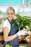 Gardener holding flowers Stock Image