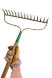 Gardener Holding a Garden Rake. Isolated On White Royalty Free Stock Images