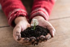 Gardener holding a handful of rich fertile soil Royalty Free Stock Photo