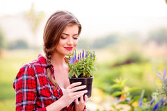 Gardener holding a seedling in flower pot, smelling it Royalty Free Stock Photos