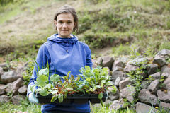 Gardener holding seedlings collection to be planted Stock Photos
