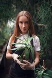 Gardener holding succulent plant in hands. Stock Photos