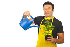 Gardener holding watering can and flower Stock Photos