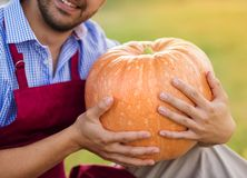 Gardener with huge pumpkin Royalty Free Stock Photography
