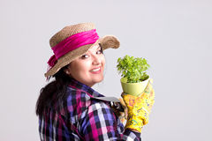 Gardener in Leghorn. Long Hair Woman with Leghorn and Garden Gloves is Holding a Fresh Green Herb Plant in Flowerpot Isolated on White Background Stock Image
