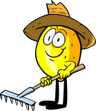 Gardener lemon with rake Royalty Free Stock Image