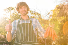 Gardener man holding a bunch of carrots and showing a thumbs up Royalty Free Stock Photos