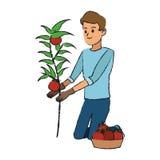 Gardener man icon Stock Image