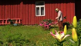 Gardener man with trimmer cut grass between flowers near house. Gardener man with trimmer cut high grass between flowers near rural homestead house. Shot on stock footage