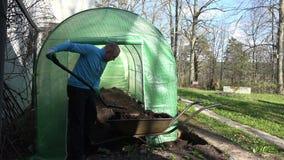 Gardener man unload rotten compost to greenhouse from barrow. 4K stock video