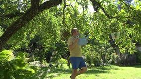 Gardener man with watering can water flower pots hanging on fruit tree in summer garden. 4K stock footage