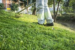 Gardener mowing the grass with lawn mower in the park. He wears Personal protective equipment PPE Royalty Free Stock Photography
