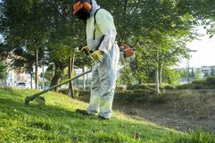 Gardener mowing the grass with lawn mower in the park. He wears Personal protective equipment PPE Stock Image