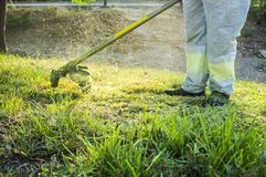 Gardener mowing the grass with lawn mower in the park. He wears Personal protective equipment PPE Royalty Free Stock Photos