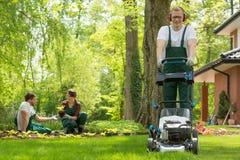 Gardener mowing the grass Stock Image