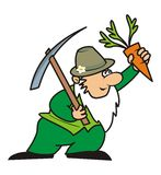 Gardener and pickaxe. The gardener carries a pickaxe and carrots Royalty Free Stock Image