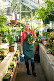 Gardener with potted plant and watering can at greenhouse. Portrait of female gardener standing with potted plant and watering can at greenhouse stock photos