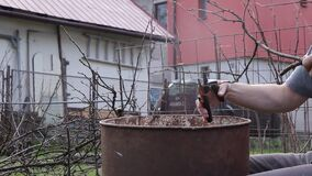 Gardener pruning fruit trees - apple, cherry tree - during spring for better harvest on autumn. Man takes the branch and gradually
