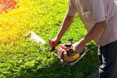 Gardener pruning in the park Royalty Free Stock Photos