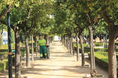 Gardener in a public park in Malaga Royalty Free Stock Photos