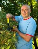 Gardener  r near   bush Royalty Free Stock Images