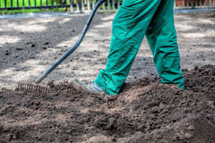 Gardener with rake Royalty Free Stock Photo