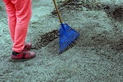 The janitor rakes the blue rakes with garbage on the ground. The gardener rakes the rubbish on the ground with blue rakes Royalty Free Stock Images