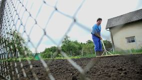 Gardener rakes the soil with wooden rake shot from behind the fence stock footage