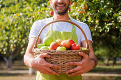 Gardener with rich harvest. Royalty Free Stock Photo