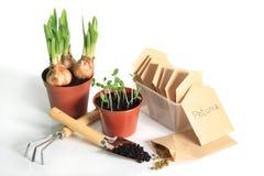 Gardener's spring Stock Images