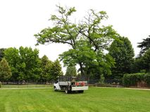Gardener's truck. And equipment on freshly cut grass in a park Stock Photo