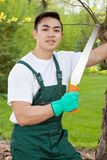 Gardener with saw Stock Photography