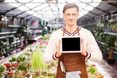 Gardener showing blank screen tablet in greenhouse Stock Photography