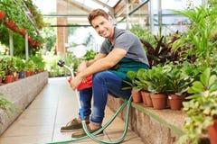 Gardener sitting between plants in nursery shop Royalty Free Stock Images