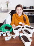 Gardener sowing seeds in ground in kitchen Stock Photography
