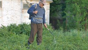 Gardener man sprays pesticides on potato leaves beetles