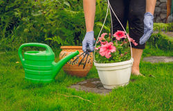 Gardener and the spring garden Stock Photography