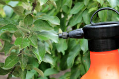 Gardener sprinkles young apple tree from pests and diseases with. Bottle sprayer.  Spray fly on leaves. Close up Royalty Free Stock Photography