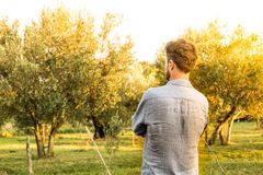Gardener standing in front of an orchard - summer royalty free stock images