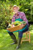 Gardener with straw hat and a basket with vegetables Royalty Free Stock Image