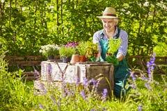 Gardener Straw hat Plants Garden Royalty Free Stock Photos