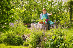 Gardener Straw hat Plants Garden thumbs up Stock Image
