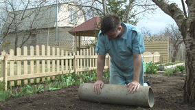 The gardener strengthens the seeds of the lawn for growth stock footage